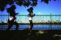 running central park reservoir